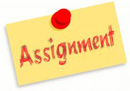 Assignment / Essay / Thesis / Dissertation Writing help in D