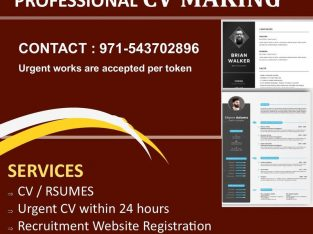 PROFESSIONAL 100% success oriented SERVICES-CV /Resume maker